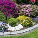 5 Passi per avere un giardino invidiabile